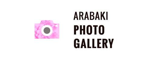 ARABAKI ROCK FEST.19 PHOTO GALLERY